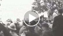 Cernobbio. Manifestazioni dell'Ente Nazionale della Moda nel giardino di Villa d'Este.Celebrazione della Sagra della seta con presentazione di modelli...