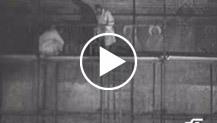 """""""Italia - A Firenze nell'ex refettorio di S.Croce troviamo il Cristo di Cimabue irrimediabilmente sfigurato dalla Furia dell'Arno"""""""