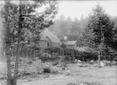 Villaggio di baite in legno in un bosco  ...