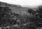 Alluvione del 17 giugno 1939 Danni causati dal tor ...